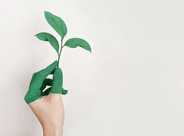 Aditivos respetuosos con el medio ambiente